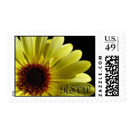 Yellow Daisy Flower Wedding RSVP Postage