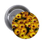 Yellow daisy flowers in spring pin