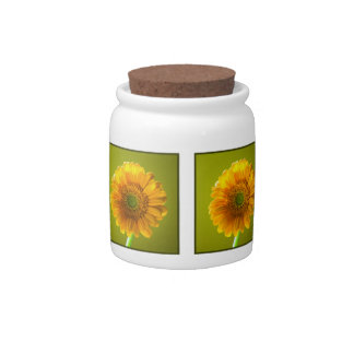 Yellow Daisy Gerbera Flower Candy Dish