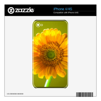 Yellow Daisy Gerbera Flower Decals For The iPhone 4