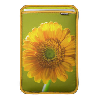 Yellow Daisy Gerbera Flower MacBook Sleeve