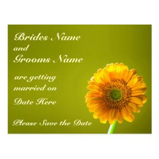 Yellow Daisy Gerbra Flower Save The Date Postcard