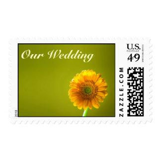 Yellow Daisy Gerbra Flower Wedding Postage