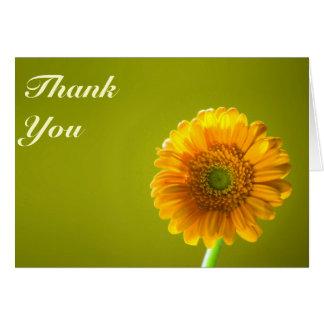 Yellow Daisy Gerbra Flower Wedding Thank You Card