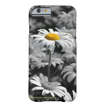 Yellow daisy in a sea of black and white daisies. barely there iPhone 6 case