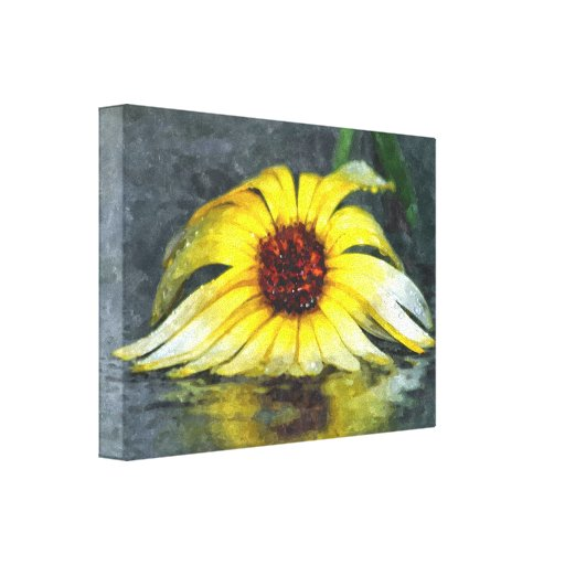 Yellow Daisy In The Rain Gallery Wrapped Canvas