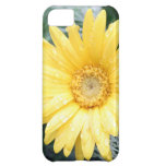 Yellow Daisy iPhone Case Cover For iPhone 5C
