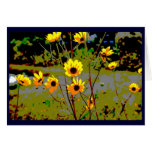 Yellow daisy ish flowers green background greeting cards