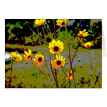 Yellow daisy ish flowers green background card