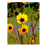 Yellow daisy ish flowers green background post cards