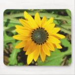 Yellow Daisy Mouse Pad