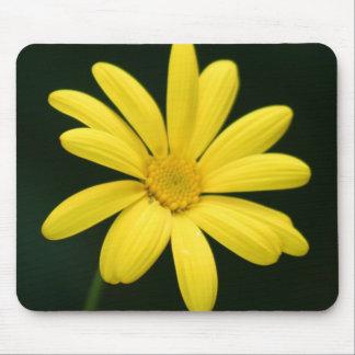 Yellow Daisy mousepads