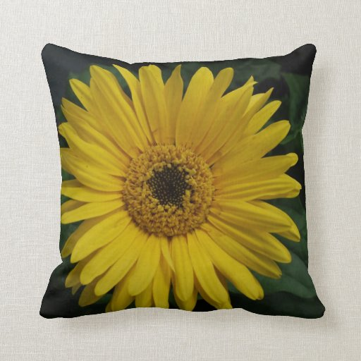 Yellow Daisy Pillow