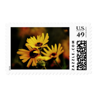 Yellow Daisy Postage Stamps