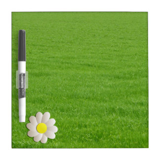 YELLOW DAISY SPRING TIME FLOWER ON GREEN GRASS Dry-Erase BOARD