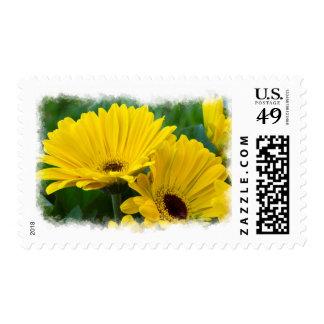 Yellow Daisy White Edge Postage