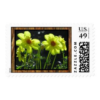 Yellow Dalia Flowers Stamp