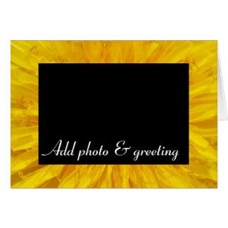 Yellow Dandelion Flower Photo Dot 0560 Card