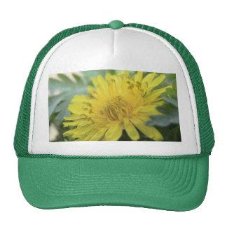 Yellow Dandelion In The Shade Trucker Hat