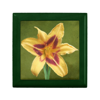 Yellow Day Lily Gift Box
