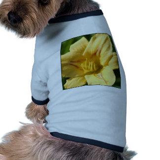Yellow Daylily Dog Tee