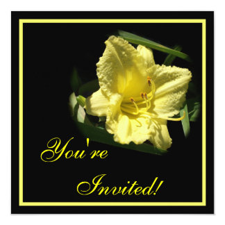 Yellow Daylily Flower Announcement