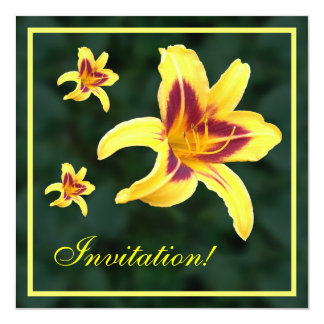 "Yellow Daylily Flower with Red, Hemerocallis: 5.25"" Square Invitation Card"
