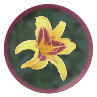 Yellow Daylily Flower with Red, Hemerocallis: Plate