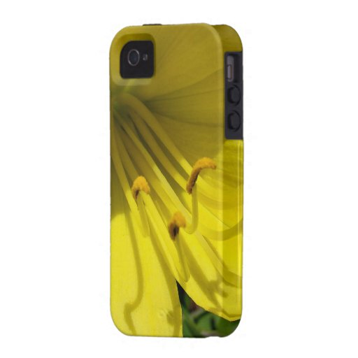 Yellow Daylily iPhone 4/4S Case-Mate iPhone 4 Cover