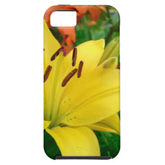 Yellow daylily iPhone SE/5/5s case