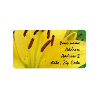Yellow daylily label