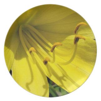 Yellow Daylily Plate