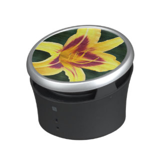 Yellow Daylily with Red Speaker