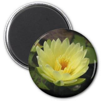 Yellow Dazzler 2 Inch Round Magnet