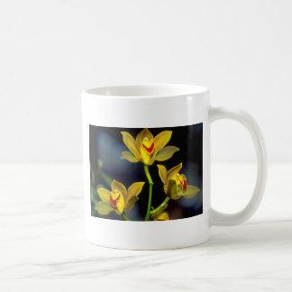 yellow Dendobium flowers Classic White Coffee Mug