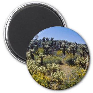 yellow Desert flowers, Anza Borrego Desert State P 2 Inch Round Magnet