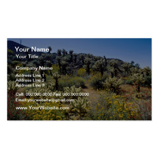 yellow Desert flowers, Anza Borrego Desert State P Double-Sided Standard Business Cards (Pack Of 100)