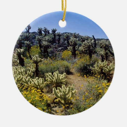 yellow Desert flowers, Anza Borrego Desert State P Double-Sided Ceramic Round Christmas Ornament