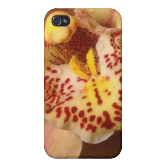 yellow Dew drops flowers Case For iPhone 4