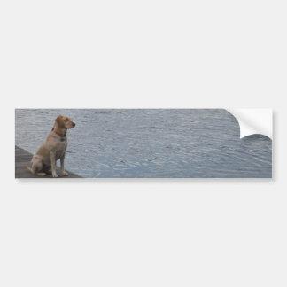 Yellow dog on dock bumper sticker
