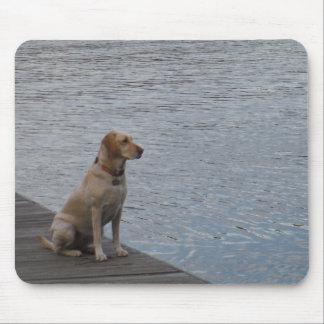 Yellow dog on dock mouse pad