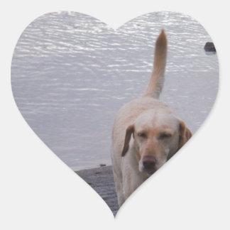 Yellow Dog on dock Yellow Labrador retriever Heart Sticker