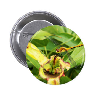 Yellow Dragonfly 2 Inch Round Button