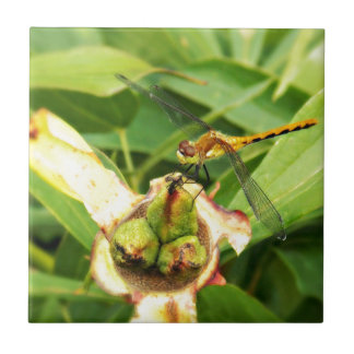Yellow Dragonfly Ceramic Tile