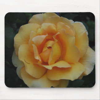 Yellow Dream Rose Mouse Mats