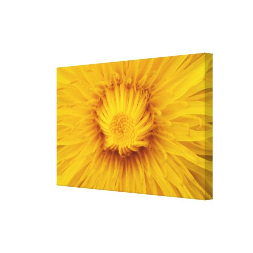 Yellow dream Yellow dream Gallery Wrap Canvas
