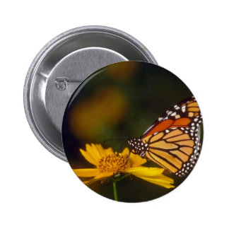 yellow Dreams are free flowers Pinback Buttons