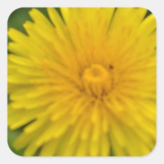 Yellow dreams square sticker