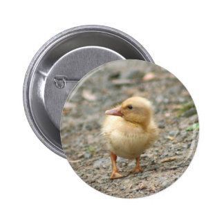 Yellow Duckling button