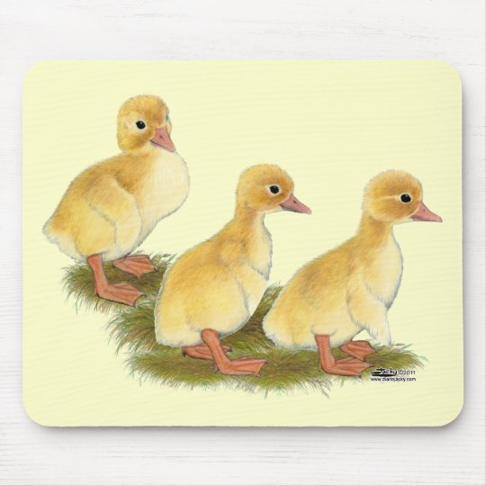 Yellow Ducklings Mouse Pad